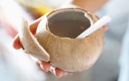 Trời nắng nếu uống nước dừa nhất định phải biết 5 điều sau đây