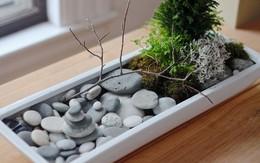 6 ý tưởng biến sỏi đá thành đồ trang trí nhà cực đẹp lại rất dễ làm