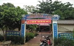 Nghệ An: Tạm dừng công tác hiệu trưởng vì nghi dùng gà nhiễm bệnh nấu cho học sinh mầm non