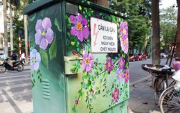 Hà Nội hô biến những chiếc bốt điện khô cứng ở phố cổ thành tủ hoa rực rỡ