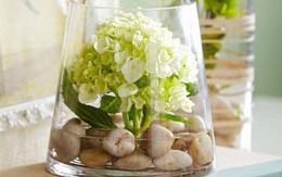 7 mẹo vặt và thủ thuật giúp bạn cắm hoa đẹp