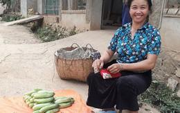 Người phụ nữ dân tộc thu 1 triệu đồng mỗi ngày