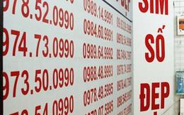 Vì sao SIM 11 số đột ngột tăng giá chóng mặt?