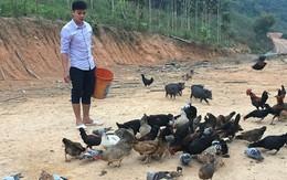 Tốt nghiệp Học viện báo chí, chàng trai dân tộc bỏ phố về quê nuôi gà lãi 10 triệu/tháng