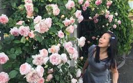 Sang xứ hoa hồng làm vườn đậm chất quê, mẹ Việt khiến người Hungary cũng ngỡ ngàng vì quá đẹp