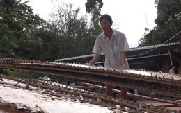 Làng nghề bánh tráng trăm năm vào vụ Tết
