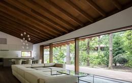 Lấy cảm hứng từ những chiếc lá rơi, kiến trúc sư thiết kế biệt thự cực ấn tượng
