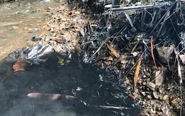 UBND TP Hà Nội công bố thông tin cụ thể về vụ nước sinh hoạt có mùi lạ trên diện rộng