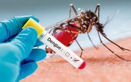 Bộ Y tế cập nhật kiến thức mới điều trị bệnh sốt xuất huyết, giảm tỷ lệ tử vong
