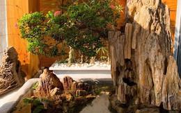 Ông xã Lê Phương tự làm bể cá xinh xắn đặt trong nhà cho hai con
