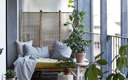 Dù chỉ sở hữu một không gian nhỏ xíu vẫn có vô vàn cách sáng tạo để trồng cây xanh