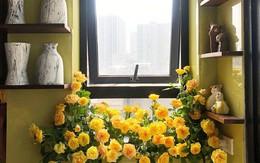 """Căn bếp nhỏ chứa """"vạn đồ"""" hữu ích lại còn rợp hoa của bà mẹ Hà Nội"""