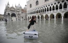 Dân Venice khóc ròng vì ngập lụt lịch sử, du khách vẫn mê mải selfie