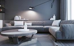 Bạn sẽ hối hận nếu không sử dụng gam màu xám khi muốn nâng tầm sang trọng cho phòng khách