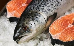"""Lợi ích của ăn cá và hải sản không như chúng ta nghĩ, nó là """"hoa hồng có gai"""""""