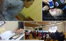"""Trưa mai sẽ tổ chức họp báo vụ """"thỉnh vong"""" tại chùa Ba Vàng"""