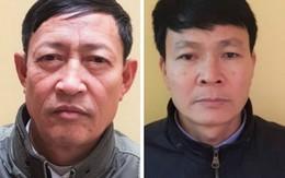 Trưởng phòng nông nghiệp huyện và nguyên Chủ tịch xã ở Hải Phòng bị bắt