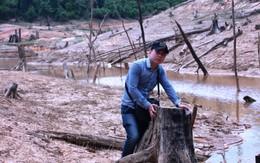 """Nhà báo Hùng Võ và hành trình """"lật mặt"""" tội ác dưới tán rừng xanh"""
