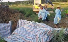 Liên tiếp phát hiện các ổ dịch tả lợn Châu Phi ở Hà Tĩnh