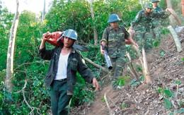 Vụ cháy lớn ở Hà Tĩnh: Những người dân xả thân cứu rừng