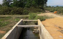Hà Tĩnh: Phát hiện cụ ông tử vong dưới mương nước