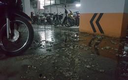 Hà Nội: Hầm gửi xe khu đô thị Thanh Hà bốc mùi hôi thối nồng nặc, tràn ngập nước thải