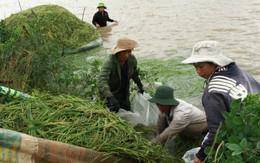 Đắk Lắk: Nước mắt người dân trong mùa lũ