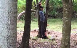 Tìm được người thân của nam thanh niên treo cổ chết trong khuôn viên khách sạn ở Hà Tĩnh
