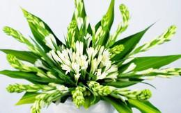 Cách cắm hoa huệ dâng ban thờ mùa Vu lan