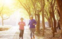 Người cao tuổi bị đau xương khớp nên tập luyện thế nào?