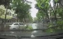 Hành động đẹp sau cơn bão khủng khiếp làm ấm lòng triệu người đang chịu mưa gió