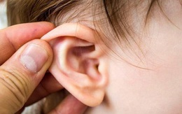 """Cậu bé 8 tuổi bị đau tai, đi khám bác sĩ sốc khi phát hiện có """"cây"""" mọc trong tai"""