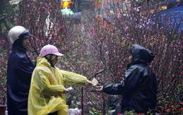 Dự báo thời tiết dịp Tết Nguyên đán: Rét đậm vào ngày mùng 2