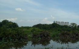 """Chuyển nhượng 32ha đất cho doanh nghiệp với giá """"bèo"""", 2 cựu lãnh đạo Công ty Tân Thuận bị bắt"""