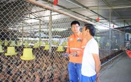 Quỹ vốn vay phục hồi kinh tế - điểm sáng về nguồn vốn cho vay tại Thái Nguyên