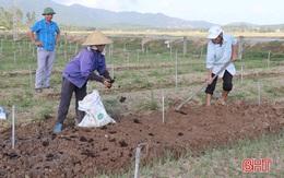 Người dân miền Trung dồn sức khôi phục sản xuất sau mưa lũ