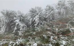 Không khí lạnh tiếp tục tăng cường, miền Bắc rét hại kéo dài