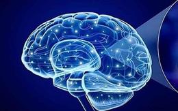 Kim Thần Khang giúp bạn vượt qua rối loạn thần kinh thực vật