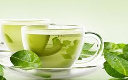 Uống quá nhiều trà xanh có thể gây tổn thương gan