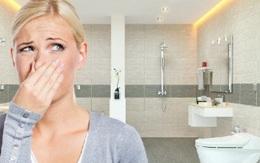 Nhà vệ sinh một tuần vẫn thơm tho nhờ mẹo nhỏ ít người biết