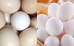 Mất 3 giây nhìn vào đặc điểm này của trứng gà: Biết ngay đâu là quả tươi, quả nào bị ngâm hóa chất, tẩy trắng