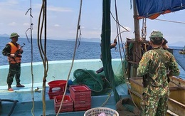 Nổ súng truy bắt tàu giã cào đánh bắt trái phép trên biển Hà Tĩnh