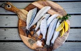 Cá là loại thực phẩm nổi tiếng ngon bổ nhưng có 5 loại cá không nên ăn vì cực nguy hiểm, có thể gây ngộ độc và cả ung thư