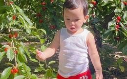 Phạm Hương đưa con trai đi du lịch