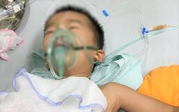 Kịp thời cứu sống bé 4 tuổi bị trâu húc thủng phổi
