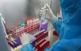 Đã có kết quả giải trình tự gene virus SARS-CoV-2 ở ổ dịch Chí Linh, Vân Đồn