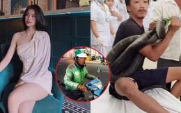 Chân dung cô gái xinh đẹp không ngại thị phi kêu gọi hàng trăm triệu ủng hộ người đàn ông cấp cứu cùng rắn hổ mang