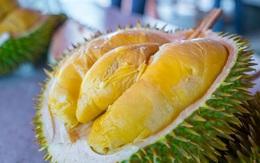 """Bất chấp giá cả, dân Việt vẫn ăn đều loại sầu riêng đắt nhất thế giới, thậm chí """"cháy hàng"""""""