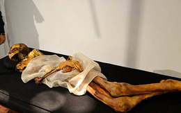 Xác ướp công chúa 2.500 tuổi có hình xăm điệu nghệ khiến giới khoa học bối rối, người dân cương quyết không công khai ảnh với lý do khó hiểu