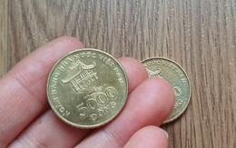 Đi tìm tiền xu Việt và nghịch lí đội giá đến hàng chục lần